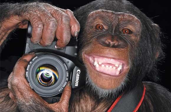 Learning Photography Image